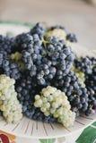 Ciérrese para arriba de las uvas de vino en una placa imagen de archivo