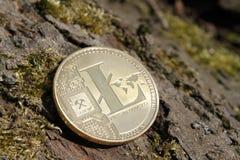 Ciérrese para arriba de litecoin de oro de la moneda en fondo cubierto de musgo de la corteza Foto de archivo libre de regalías
