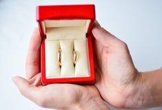 Ciérrese para arriba de los anillos de bodas en caja roja en manos imagenes de archivo