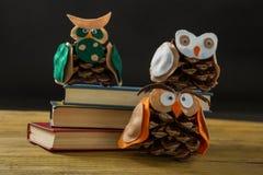 Ciérrese para arriba de los búhos hechos con los conos del pino en los libros Foto de archivo libre de regalías