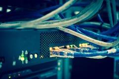 Ciérrese para arriba de los cables de Internet de la red, cordones de remiendo conectados foto de archivo