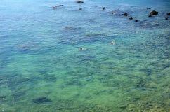 Ciérrese para arriba de los pares que bucean en Coral Coast Imágenes de archivo libres de regalías