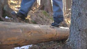 Ciérrese para arriba de los pies masculinos que caminan sobre el registro de madera que miente en el hombre joven irreconocible d metrajes
