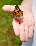 Ciérrese para arriba de mariposa de la explotación agrícola del niño Fotografía de archivo libre de regalías