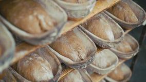 Ciérrese para arriba de muchos panes frescos del pan de centeno 4K almacen de metraje de vídeo