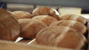 Ciérrese para arriba de muchos panes frescos del pan 4K del trigo metrajes