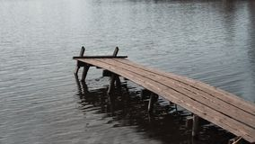 Ciérrese para arriba de muelle o del embarcadero viejo, de madera en el lago imagen de archivo
