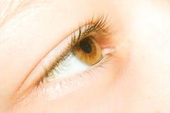 Ciérrese para arriba de ojo Fotos de archivo