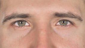 Ciérrese para arriba de ojos del centelleo del hombre de negocios almacen de video