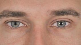 Ciérrese para arriba de ojos del centelleo del hombre de negocios almacen de metraje de vídeo