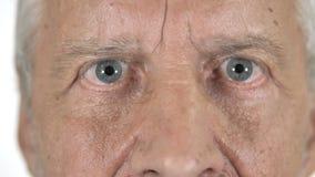 Ciérrese para arriba de ojos del centelleo del viejo hombre almacen de video