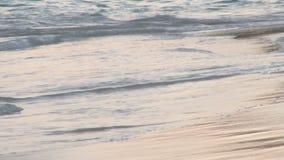 Ciérrese para arriba de ondas en la orilla de Bermudas almacen de video