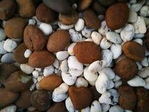 Ciérrese para arriba de pequeña textura de piedra marrón y blanca mezclada Imagenes de archivo