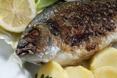 Ciérrese para arriba de pescados de la brema de mar con la patata Fotografía de archivo