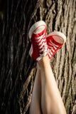 Ciérrese para arriba de piernas en los keds rojos que mienten en la madera Imagen de archivo libre de regalías