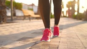 Ciérrese para arriba de piernas de una mujer que corre a lo largo de la avenida de la palma en la puesta del sol C?mara lenta metrajes