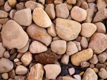 Ciérrese para arriba de rocas en la tierra Fotografía de archivo
