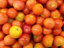 ciérrese para arriba de tomates Foto de archivo