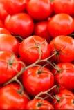 Ciérrese para arriba de tomates orgánicos frescos en el mercado al aire libre de los granjeros Él Imagenes de archivo