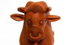 Ciérrese para arriba de toro rojo Fotografía de archivo libre de regalías