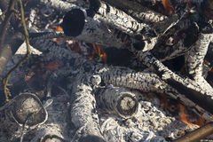 Ciérrese para arriba de un fuego de muerte con las llamas y las ascuas fotos de archivo libres de regalías
