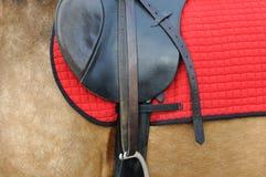 Ciérrese para arriba de un harness del caballo Imagen de archivo