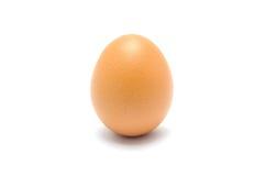 Ciérrese para arriba de un huevo  fotos de archivo libres de regalías