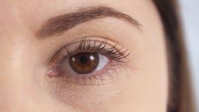 Ciérrese para arriba de un ojo del marrón del ` s de la mujer joven Muchacha que se abre y que centella el ojo almacen de video