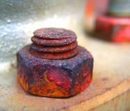 Ciérrese para arriba de un tornillo y de un tornillo Fotos de archivo