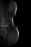 Ciérrese para arriba de un violín Imagen de archivo libre de regalías