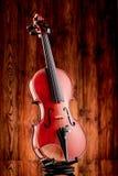 Ciérrese para arriba de un violín en la superficie de cristal Fotografía de archivo libre de regalías