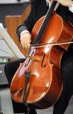 Ciérrese para arriba de un violoncelista que toca un violoncelo Imagen de archivo