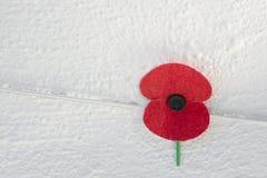 Ciérrese para arriba de una amapola roja de la conmemoración en el fondo blanco de la pared, el símbolo en el Reino Unido, Canadá fotografía de archivo