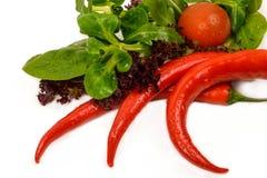 Ciérrese para arriba de verduras frescas Fotografía de archivo libre de regalías