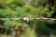 Ciérrese para arriba del alambre de púas con apariencia vintage Fotografía de archivo