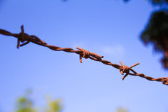 Ciérrese para arriba del alambre de púas con apariencia vintage Foto de archivo