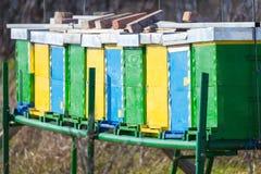 Ciérrese para arriba del colmenar en el campo al lado de Forest Trees Foto de archivo libre de regalías