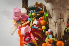 Ciérrese para arriba del cráneo animal con los diversos caramelos Imagen de archivo libre de regalías
