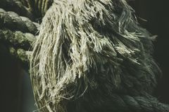 Ciérrese para arriba del extremo de una cuerda En blanco foto de archivo