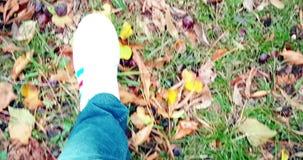 Ciérrese para arriba del hombre blanco de los zapatos de las zapatillas de deporte que camina la opinión superior sobre la alfomb