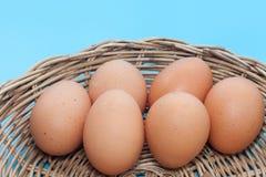 Ciérrese para arriba del huevo en cesta Imagen de archivo