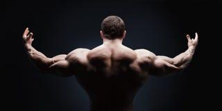 Ciérrese para arriba del man& x27 de los deportes; parte posterior muscular de s aislada Imagenes de archivo