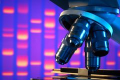 Ciérrese para arriba del microscopio del laboratorio
