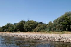 Ciérrese para arriba del paisaje natural en el riverbank del Rin en el cologne Alemania foto de archivo libre de regalías