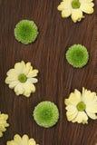 Ciérrese para arriba del pelo trigueno hermoso con las flores Fotos de archivo libres de regalías