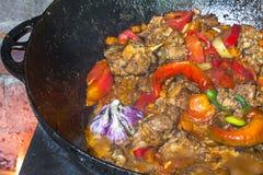 Ciérrese para arriba del plato tradicional del shurpa del Uzbek hecho de cordero y de diversas verduras en el fuego abierto en ca Foto de archivo