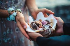 Ciérrese para arriba del ` s del hombre y de las manos del ` s de la mujer que llevan a cabo cáscaras del mar Fotos de archivo libres de regalías