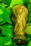 Ciérrese para arriba del trofeo de oro falso bajo la forma de globo, sobre las hojas de un verde en el parque Imágenes de archivo libres de regalías