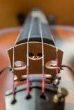Ciérrese para arriba del violín en la orientación vertical Fotografía de archivo