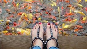 Ciérrese para arriba en los pies del ` s de la muchacha que llevan las sandalias de plata y los clavos rojos con la natación de l Imágenes de archivo libres de regalías